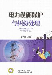 电力设施保护与纠纷处理