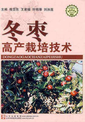 冬枣高产栽培技术