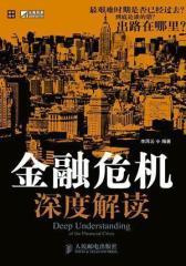 金融危机深度解读(试读本)