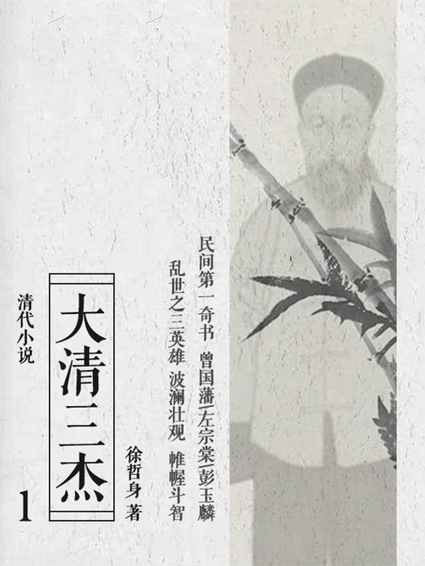 清代小说:大清三杰1