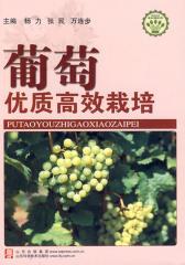 葡萄优质高效栽培