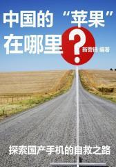 中国的-苹果-在哪里
