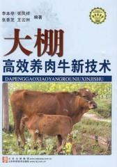 大棚高效养肉牛新技术