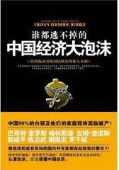 谁都逃不掉的中国经济大泡沫(试读本)