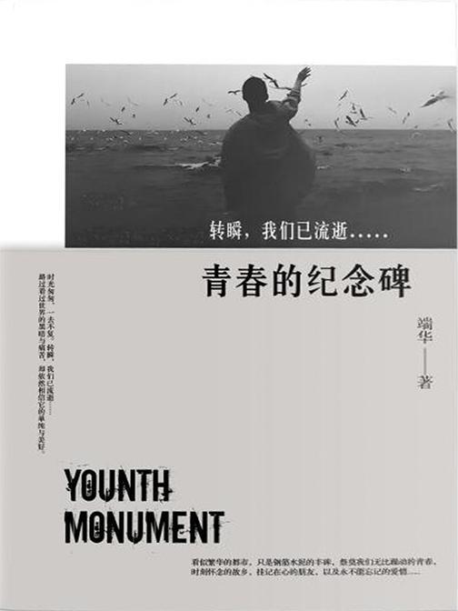 青春的纪念碑(一本纯粹的直男之书,一本不献媚女性价值观,坦率记录男人的进化史书)