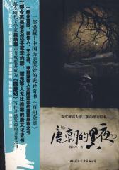 唐朝的黑夜1
