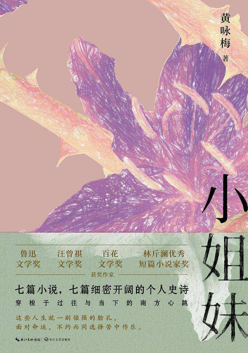 小姐妹【七篇小说,七篇细密开阔的个人史诗】
