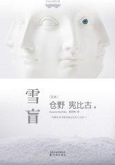 雪盲(试读本)