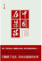 中国在梁庄(试读本)