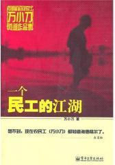 一个民工的江湖(试读本)
