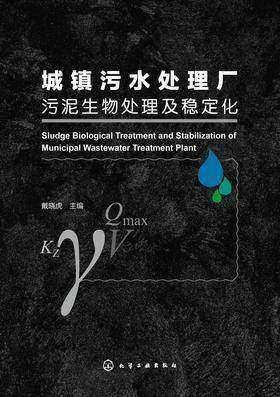 城镇污水处理厂污泥生物处理及稳定化