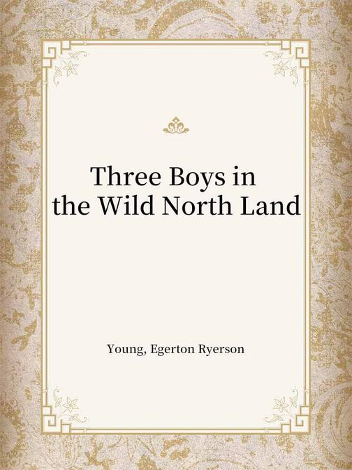 Three Boys in the Wild North Land