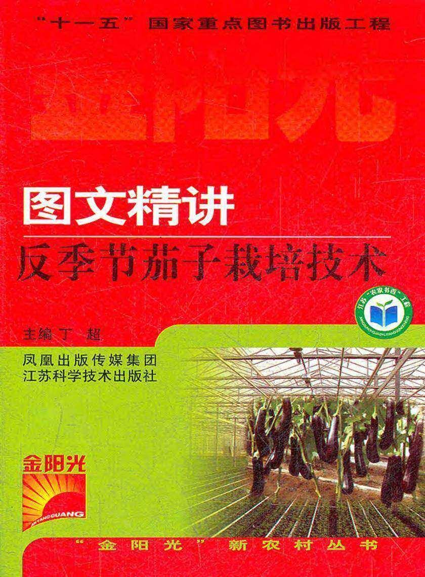 图文精讲反季节茄子栽培技术