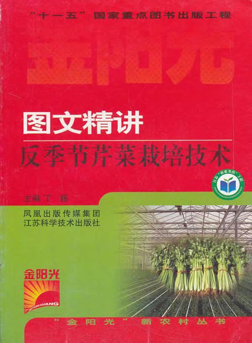 图文精讲反季节芹菜栽培技术