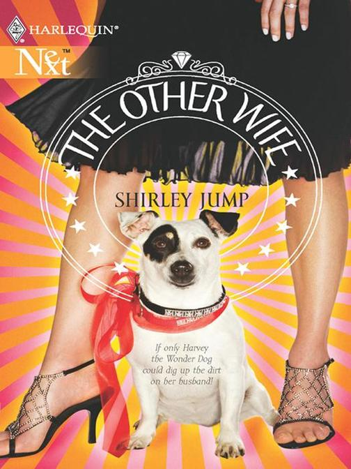 The Other Wife (Mills & Boon M&B)