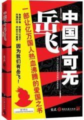 中国不可无岳飞(试读本)