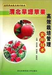 渭北旱塬苹果高效栽培管理实用技术
