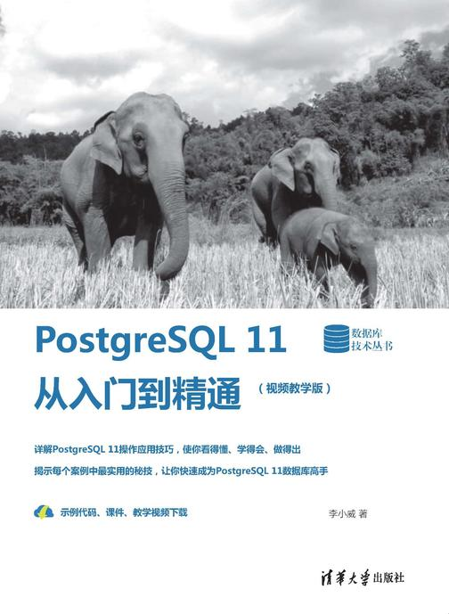 PostgreSQL 11从入门到精通(视频教学版)