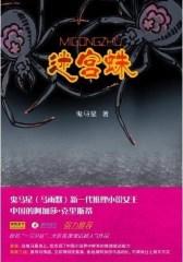 迷宫蛛(2009年 扣人心弦的浪漫推理小说)(试读本)