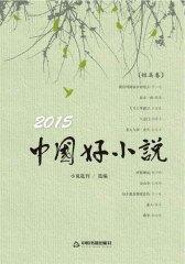 2015中国好小说·短篇卷