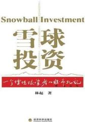 雪球投资:一个价值投资者的股市札记(试读本)
