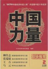 """中国力量——从""""CCTV中国经济年度人物""""评选看中国十年经济(试读本)"""