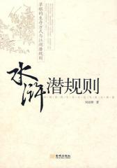 《水浒潜规则》(试读本)