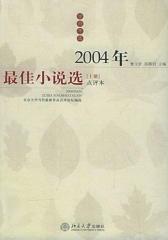 2004年  小说选(上下册)