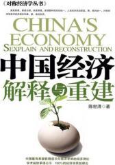 中国经济解释与重建
