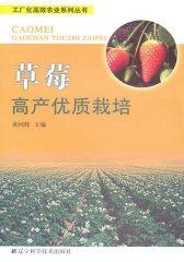 草莓高产优质栽培