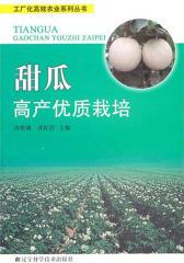 甜瓜高产优质栽培