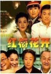 红梅花开(影视)