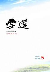 雪莲 双月刊 2011年05期(仅适用PC阅读)