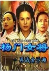 杨门女将再战金沙滩(影视)