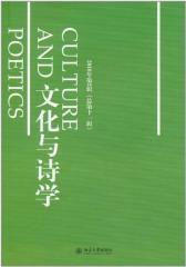 文化与诗学.2010年第2辑(仅适用PC阅读)