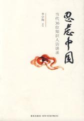 思虑中国(试读本)