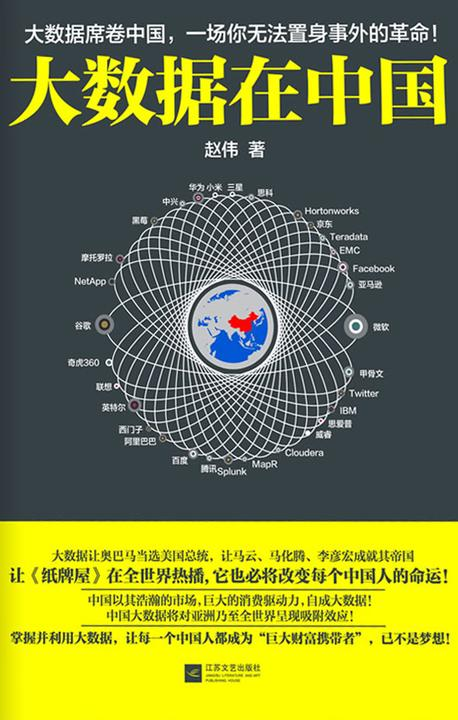 大数据在中国
