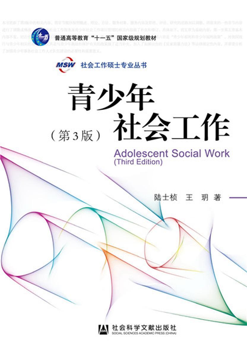 青少年社会工作(第3版)