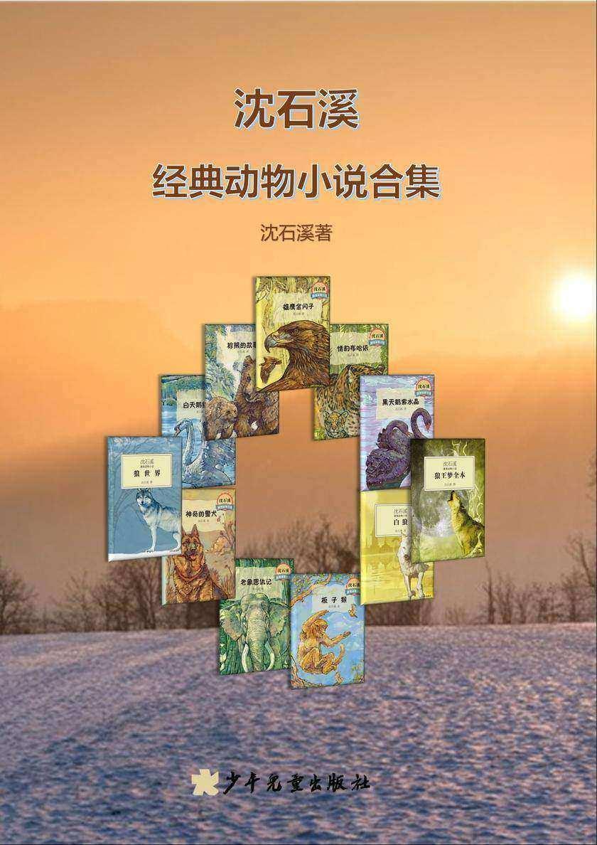 沈石溪经典动物小说合集(11册)