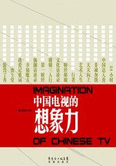 中国电视的想象力(试读本)