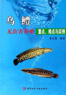 乌鳢无公害养殖重点难点与实例