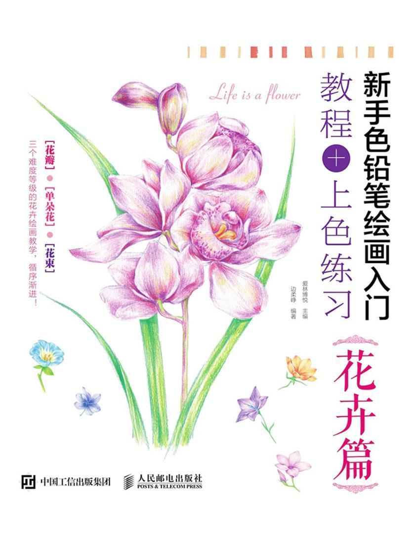 新手色铅笔绘画入门 教程+上色练习 花卉篇