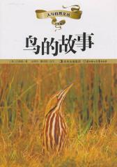 人与自然文丛(少年版):鸟的故事