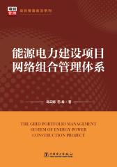 能源电力建设项目网络组合管理体系