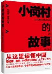 小岗村的故事(试读本)