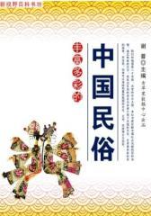 丰富多彩的中国民俗(新视野百科书坊)