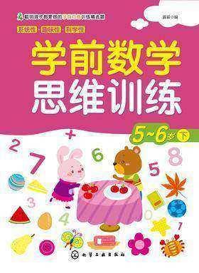 学前数学思维训练5-6岁下