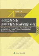 中国民营企业并购国有企业后的整合研究