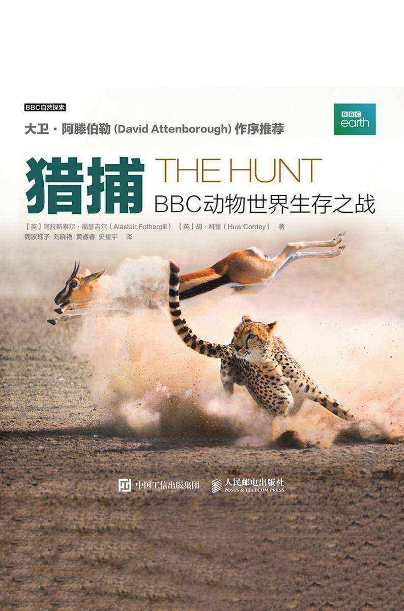 猎捕:BBC动物世界生存之战