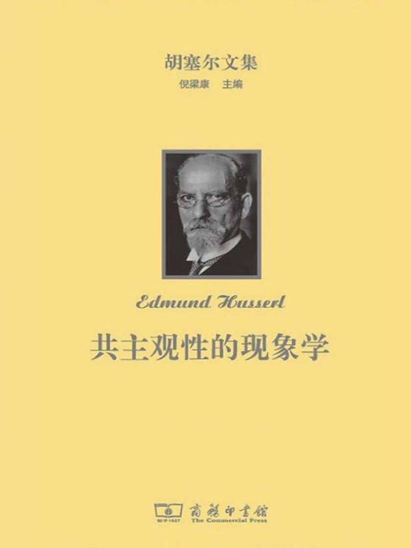 胡塞尔文集:共主观性的现象学(全三卷)